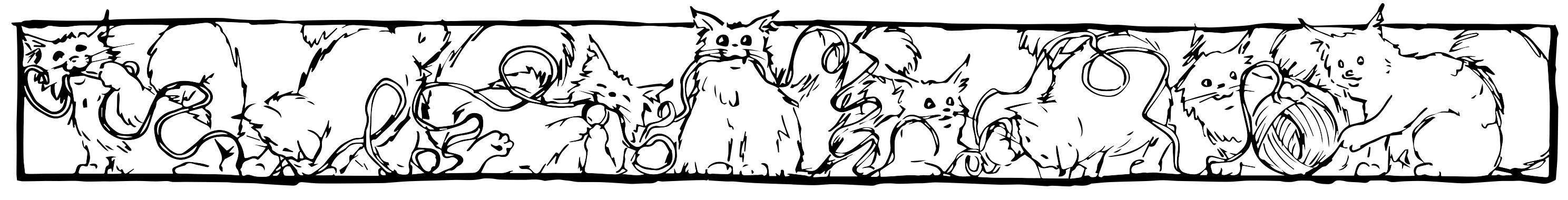 Hodowla kotów norweskich leśnych Bydgoszcz
