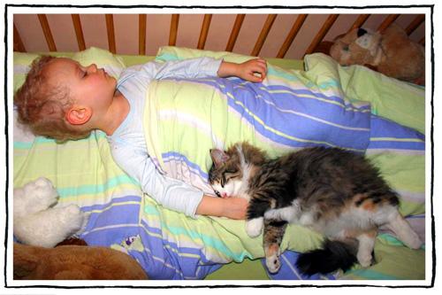 Kot i dziecko- Julek & Obsession Leśny Chochlik*PL
